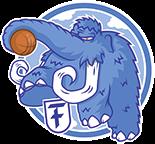 Wir sind stolzer Sponsor des Friedenauer TSC – Jugend-Basketball-Bundesliga